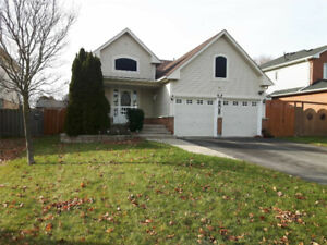 URGENT! Light-filled Lower Level in Raised Bungalow for Rent!