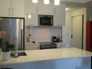 1.5 Bedrooms at 255 Bay St...... in FAMOUS  building THE BOWERY!