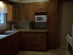 Lovely Cambridge Upstairs Bungalow Available in East Galt Cambridge Kitchener Area image 3