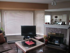 One bedroom furnished condo available Oct 1/18 to April 30/19