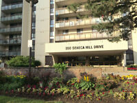 1 Bed Large Condo (Finch/Don Mills) 15th Floor