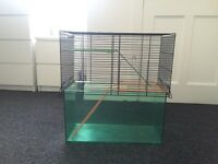 Hamster/Gerbil cage and equipment