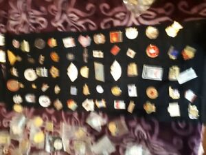 Large pin collection