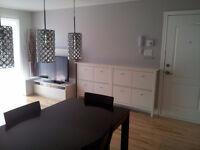 Modern 2 Bedroom condo w/ parking Charlevoix Metro