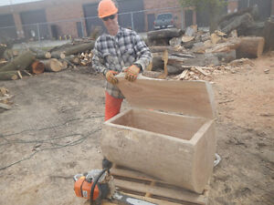 Tree removal and log milling Kitchener / Waterloo Kitchener Area image 8