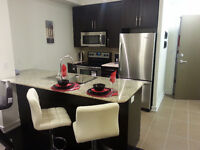 Fully Furnished Trendy Condos 1, 1 + Den & 2 Beds