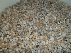 Aquarium Gravel - 4 gallon pail Kitchener / Waterloo Kitchener Area image 2