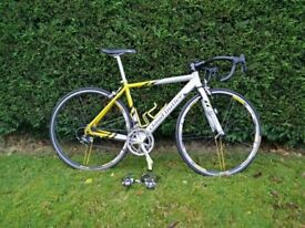 Claud Butler Milano roadbike / bicycle / bike / 25 inch wheels / 48.5cm frame / Very Good condition