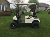 2009 E-Z-GO RXV Lifted Electric Golf Car with Silverwolf 4WD Kit