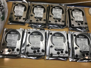 8x 2TB Western Digital Black Hard Drives