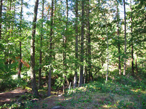 Bowen Island Parkland and Stunning Viewpoints - Lot 14 Evergreen North Shore Greater Vancouver Area image 3