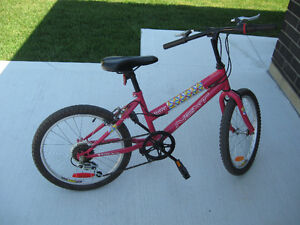 20 inches 6 speeds girl bike mint condition