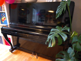 Piano. Beautiful black piano by Allison