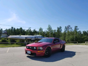 2007 mustang gt California special edition low kms