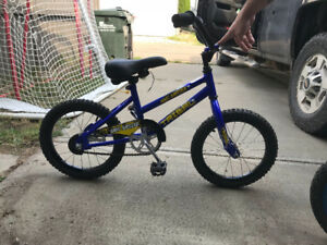 Tribal dirt buster bmx kids bicycle