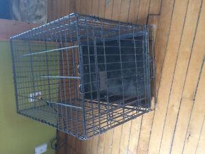 Cage a chien à vendre