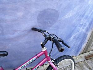 """mountain bike (falcon). tire size 20"""", 5 speed . London Ontario image 6"""