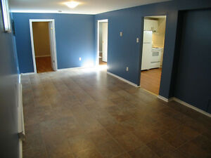 Winter Special! - Quiet 2 BDM basement apartment near CNA & MUN