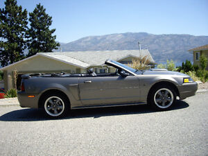 2003 Ford Mustang Convertible *New price*