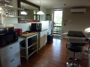1-bedroom in-law suite for rent starting August 1.