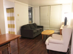 Furnished 1 bed + 1 den in Downtown Coal Harbour