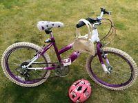 "Girls 20"" Raleigh Bike"