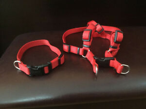 Set of Dog Harness and Collar