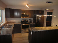 Bright, brand new 1bdrm suite