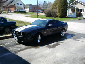 Searching for my old 2005 Mustang GT