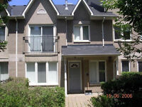 2 bed room 2 bath - townhouse for rent - Markham rd/sheppard