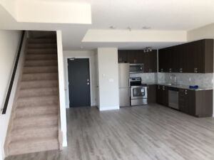total brand new condo townhouse