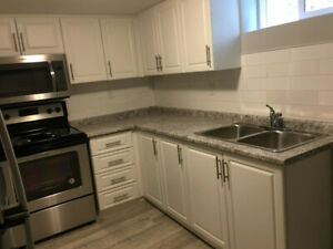 >>Fully renovated 2 Bedroom Lower Level Unit Hamilton Mountain<<