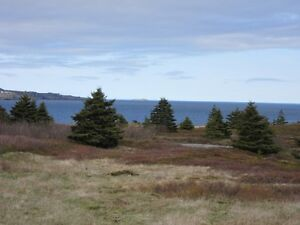 LAND at Mad Rock - Bay Roberts, NL - MLS# 1131965 St. John's Newfoundland image 5