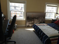 NEW IN SYDENHAM WARD FURNISHED all inclusive/parking