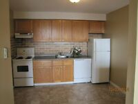 Roomy 2 bedroom apartment. Heat and lights included. East SJ.