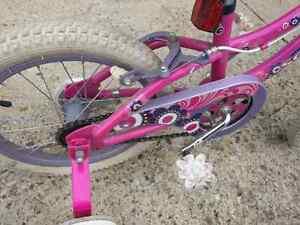 "16"" Girls Bike Strathcona County Edmonton Area image 4"