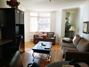 1Bdr Downtown Furnished Apartment With Balcony!