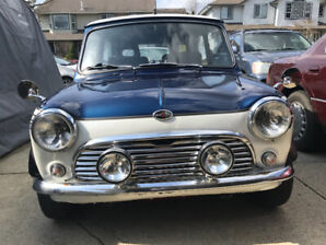 Classic 1971 mini for sale