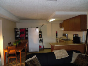 Large 1 bedroom  Basement suite Coquitlam