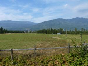Shuswap Lake View Property