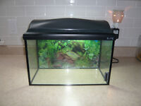 2.5 Gallon Aquarium Kit comes with the following: