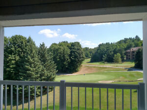 Luxury 4 Season Resort; Fully Furnished; Investment Opportunity