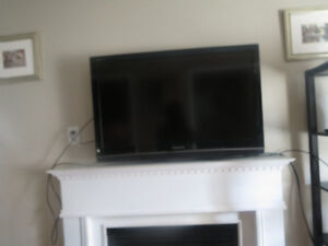 Great Condition Flat Screen TV !