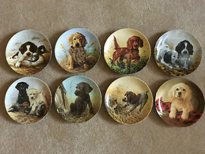 Lynn Kaatz Field Puppies Collector Plates - complete set of 8