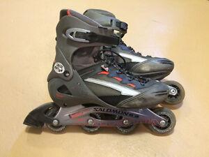 Patins a roues alignees / Inline skates (rollerblades)