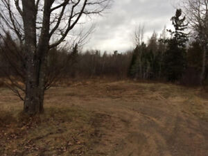 Land For Sale with Septic and Well in Cambridge-Narrows
