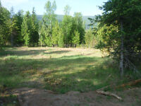 10 Acres/ Flat Land /Fantastic View of Valhalla Mountain Ranges
