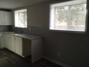 Available to Rent - Bright Reno Lower Duplex next to Park