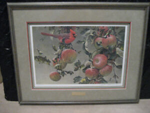 ROBERT BATEMAN-CARDINAL AND WILD APPLES FRAMED