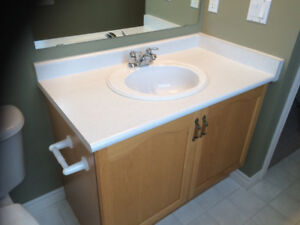 "40"" Raywall Vanity with countertop and sink"